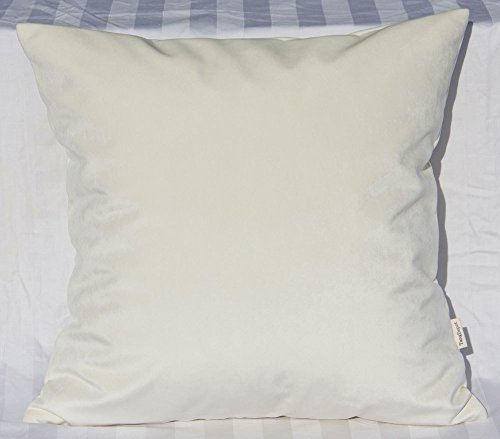 TangDepot Solid Velvet Throw Pillow Cover/Euro Sham/Cushion Sham, Super Luxury Soft Pillow Cases